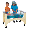 See-Thru Sensory Table